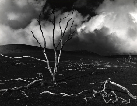 Brett Weston. Изображение № 1.