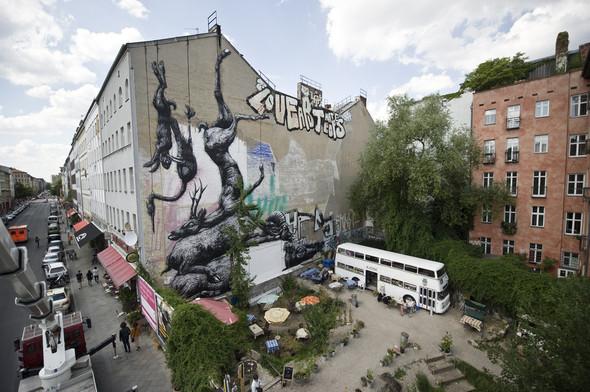 Животный стрит-арт от бельгийского граффитчика ROA. Изображение № 25.