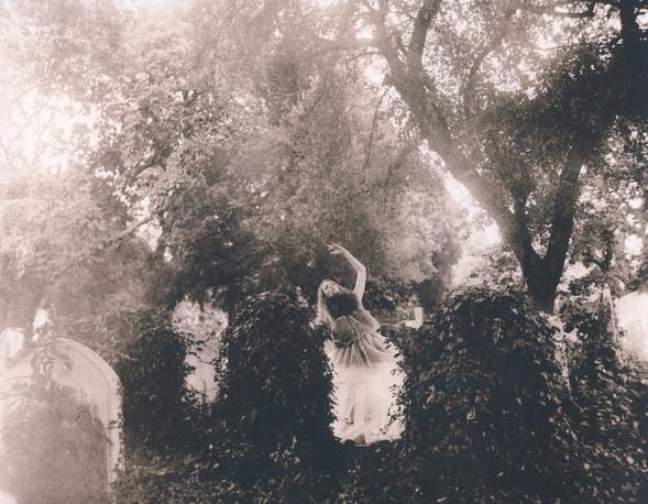 Witches vs. Fairies. Изображение № 8.