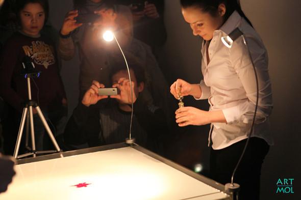 Фестиваль Научное искусство. Изображение № 43.
