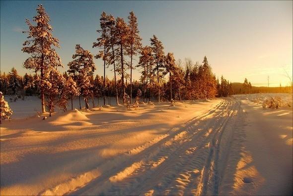 Изображение 35. Выходные в шведском лесу.. Изображение № 35.