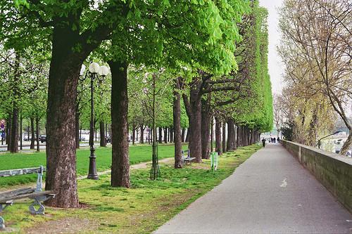 Изображение 88. Париж.. Изображение № 4.