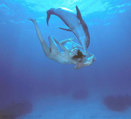 Todd Essick. Подводный мир. Изображение № 5.
