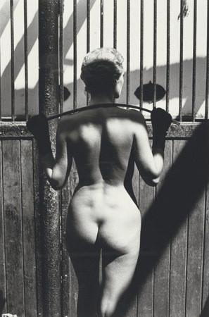 Части тела: Обнаженные женщины на фотографиях 70х-80х годов. Изображение № 9.