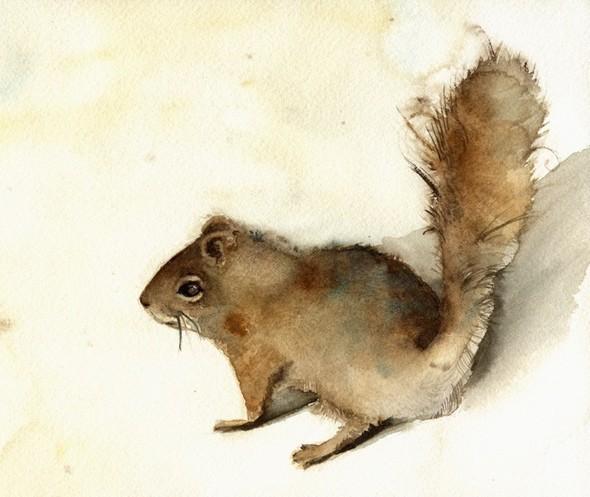 Изображение 50. Amber Alexander - животные, сияющие акварелью.. Изображение № 48.