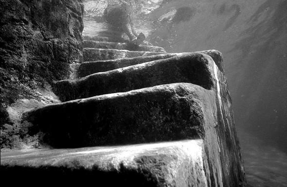 Подводная жизнь глазами фотографа Карлоса Франко. Изображение № 1.