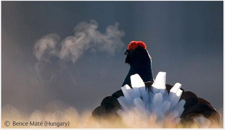 Победители Wildlife Photographer 2008. Изображение № 17.