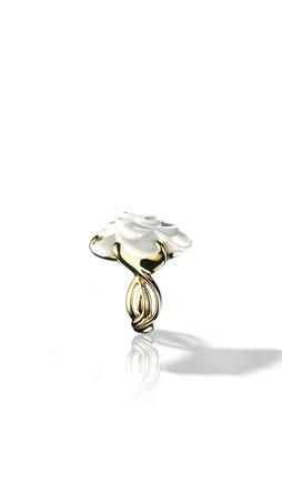 Chanel: история одного цветка. Изображение № 1.