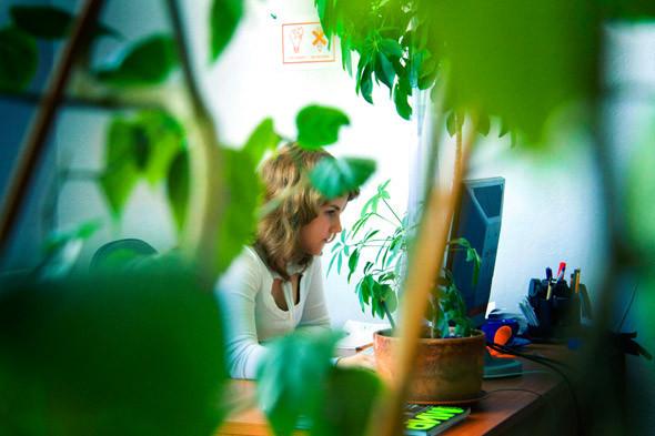 Офис дизайн-студии «Nimax». Изображение № 13.