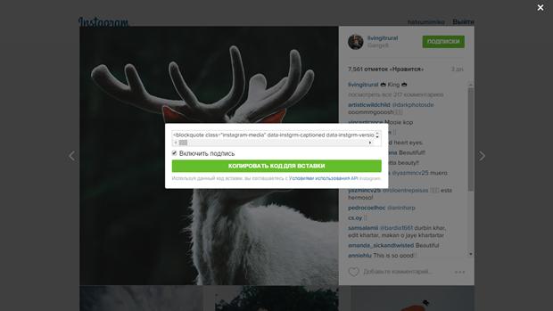 Instagram обновил дизайн веб-версии. Изображение № 3.