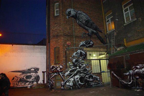 Животный стрит-арт от бельгийского граффитчика ROA. Изображение № 13.