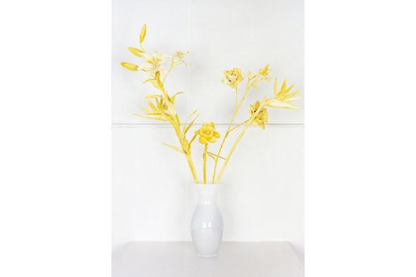 Jaap Scheeren and Hans Gremmen Fake Flowers in Full Color. Cерия, состоящая только из фотографий неживых объектов. Изображение № 32.