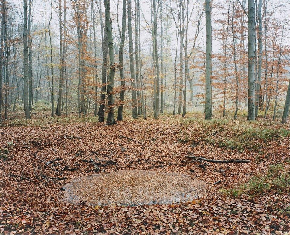 Галерея: как война изменила леса Германии. Изображение № 6.