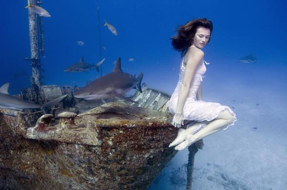 Todd Essick. Подводный мир. Изображение № 18.