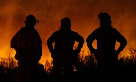 Пожары вКалифорнии. Изображение № 21.