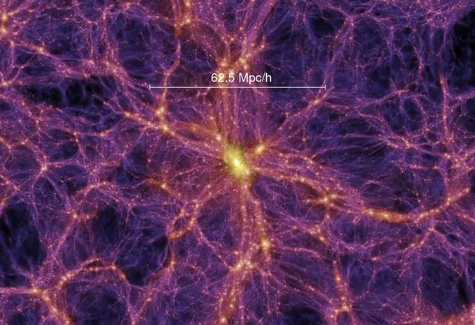 Светодиодная подсветка деревьев как наглядная модель Вселенной. Изображение № 3.