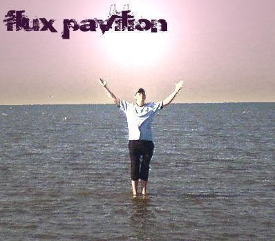 Изображение 1. Circus Presents Flux Pavilion's Freak Show mix.. Изображение № 1.
