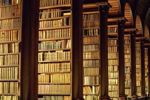 Google books или как найти иголку в стоге сена (!). Изображение № 2.