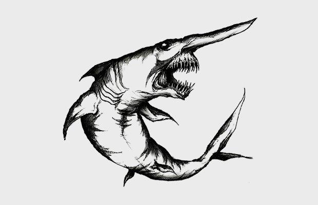 Чем акулы похожи  на единорогов . Изображение № 3.