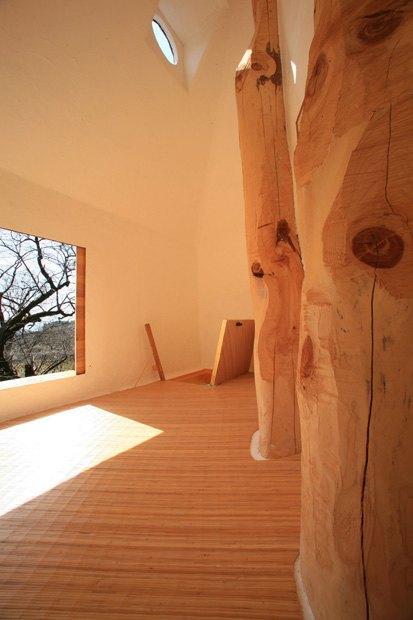 В Японии построили домик на дереве для любования сакурой. Изображение № 4.