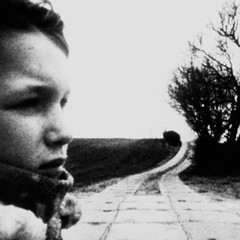 Свежая кровь: Тео Солник, кинорежиссер. Изображение №15.