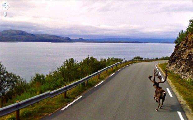 Джон Рафман о супергероях, торнадо и животных на Google Street View. Изображение № 9.