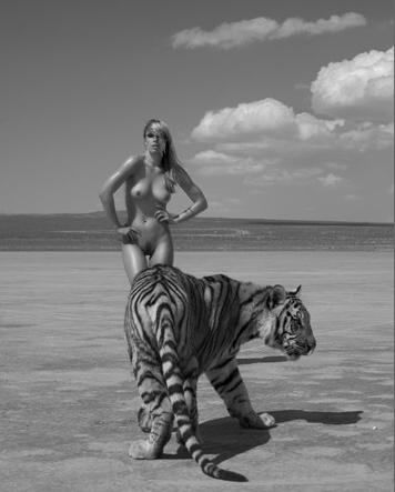 Sylvie Blum BigCats. Изображение № 16.