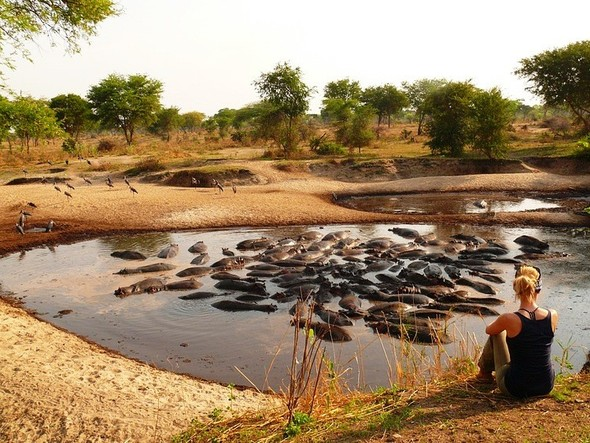 Бегемотово царство. Танзания. Изображение № 4.