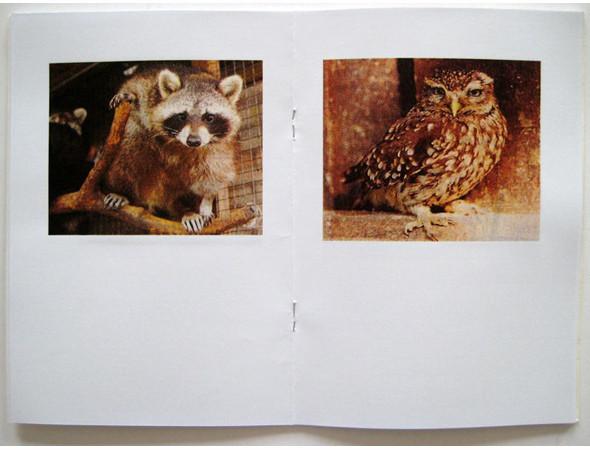 Изображение 38. 5 блогов о независимых фотокнигах и зинах.. Изображение № 12.