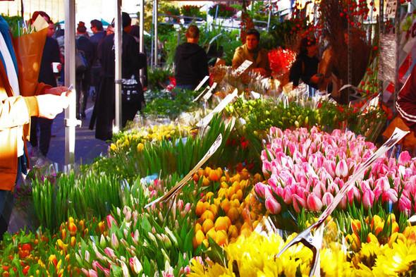 Columbia Road Flower Market/Цветочный рай. Изображение № 1.