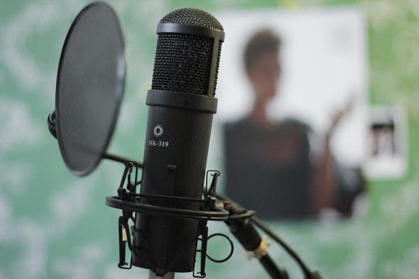 Микрофон «Октава МК-319». Изображение № 33.