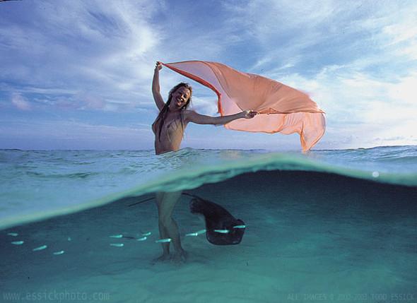 Todd Essick. Подводный мир. Изображение № 2.