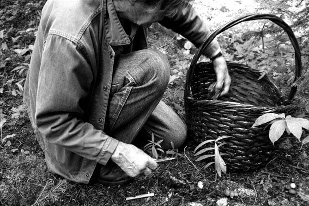 100 лет со дня рождения Джона Кейджа. Изображение № 21.