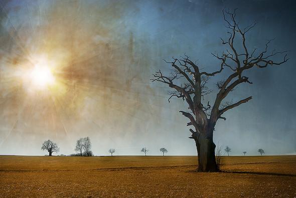 Томас Гаук. Пейзажи на перекрестке времен. Изображение № 7.