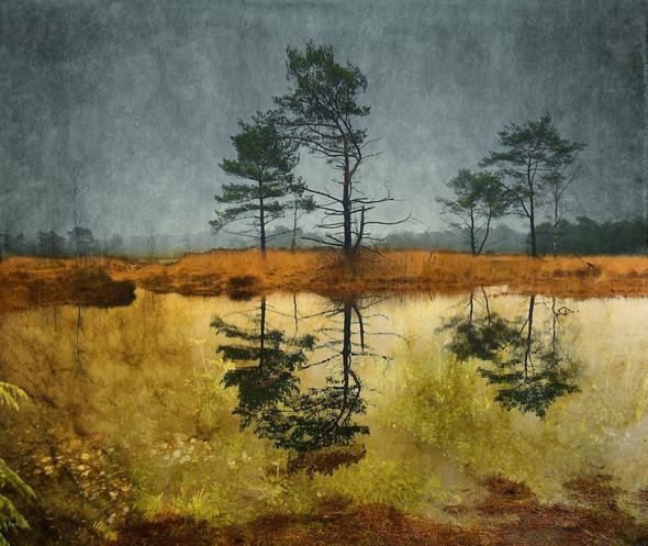 Фотография Ларса ван де Гоора. Изображение № 20.