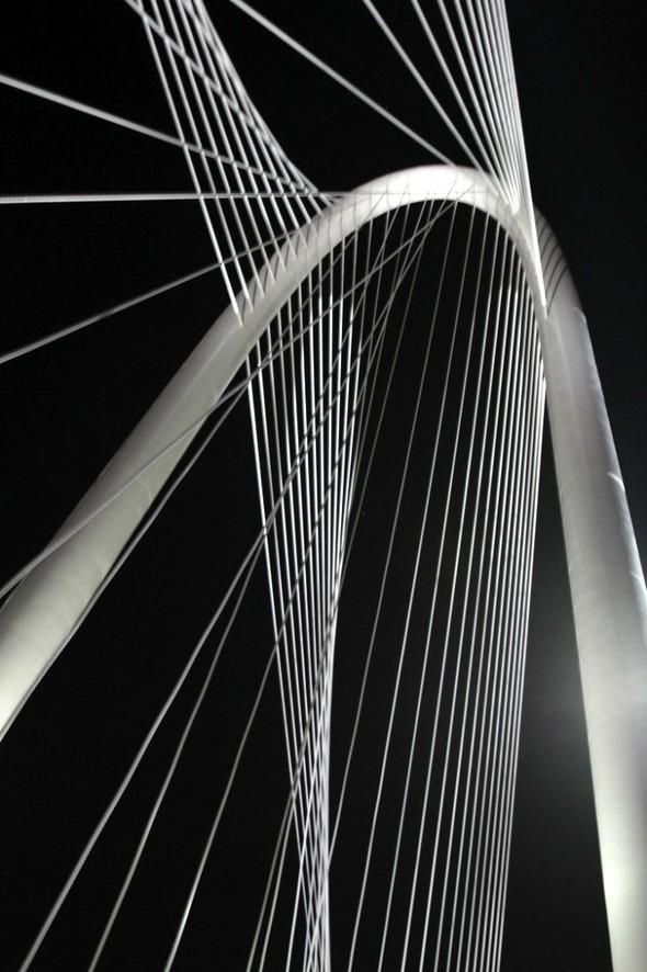 Новый мост Сантьяго Калатравы. Изображение № 5.