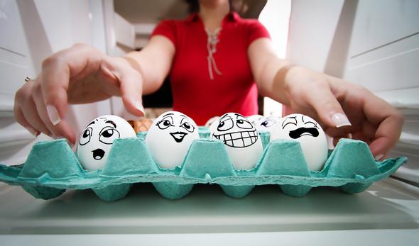 Удивительная жизнь яиц. Изображение № 26.