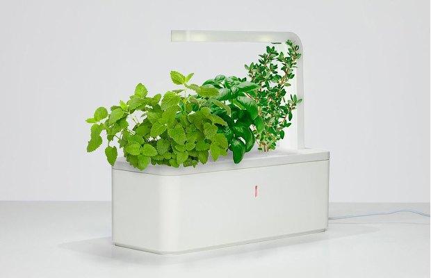 8 технологичных способов выращивать еду дома. Изображение № 5.