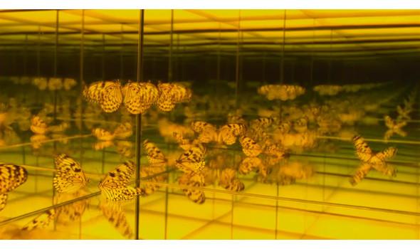 Кадр из фильма «Теория струн»  . Изображение № 20.