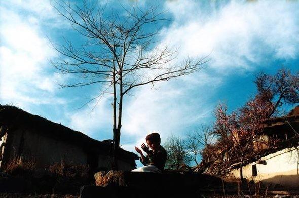 Изображение 18. Победительница WORLD PRESS PHOTO 2011 Джоди Бибер.. Изображение № 10.