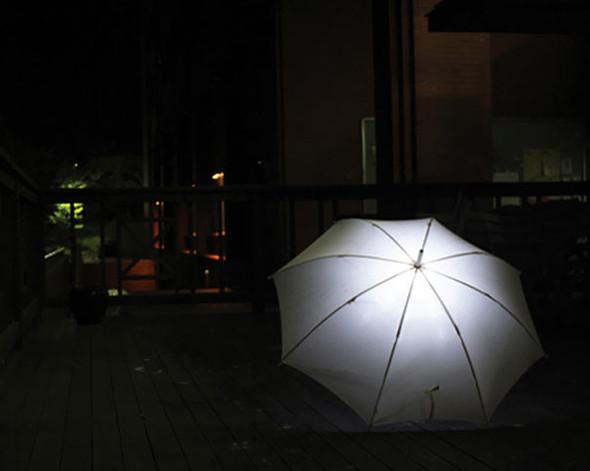 Самые креативные зонты. Изображение № 16.