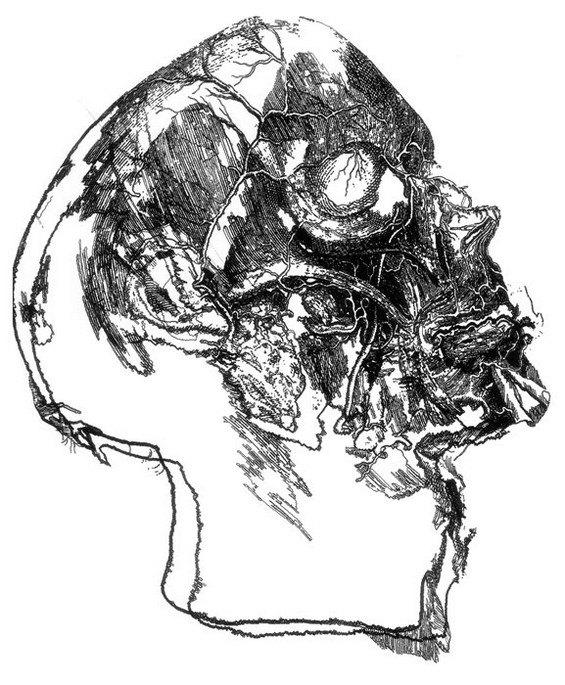 Робот рисует за художника его картины. Изображение № 2.
