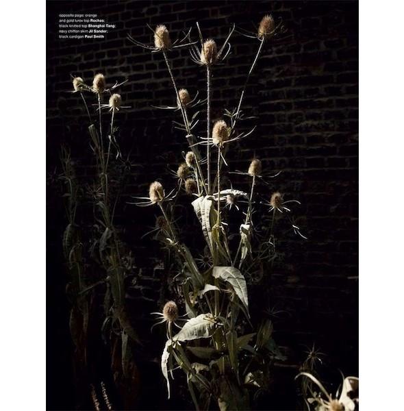 5 новых съемок: Dossier, Muse и Vogue. Изображение № 35.