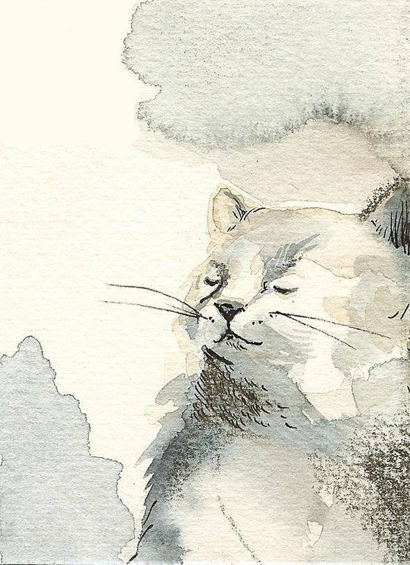 Изображение 7. Amber Alexander - животные, сияющие акварелью.. Изображение № 7.