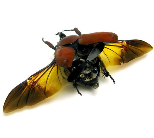 Стимпанк насекомые от Mike Libby. Изображение № 3.