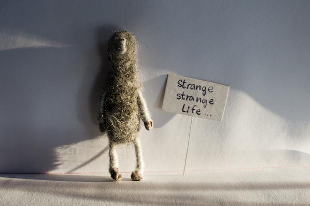 Strange life. Изображение № 4.