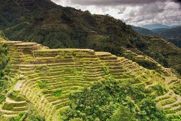 Где рис сажают тысячи лет…. Изображение № 4.
