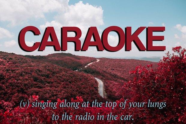 «Петь по весь голос вместе с радио в машине». Изображение № 21.