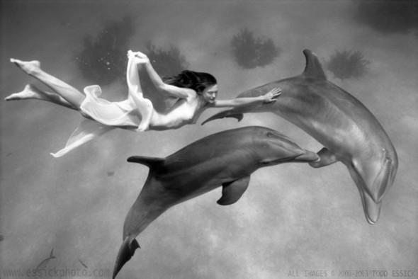 Todd Essick. Подводный мир. Изображение № 8.