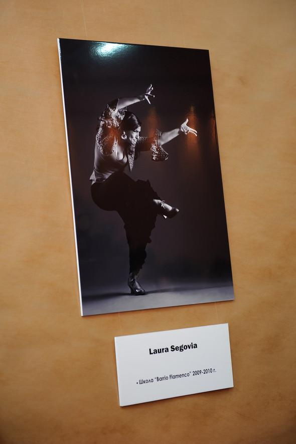 1-й Российский фестиваль фламенко. Изображение № 6.